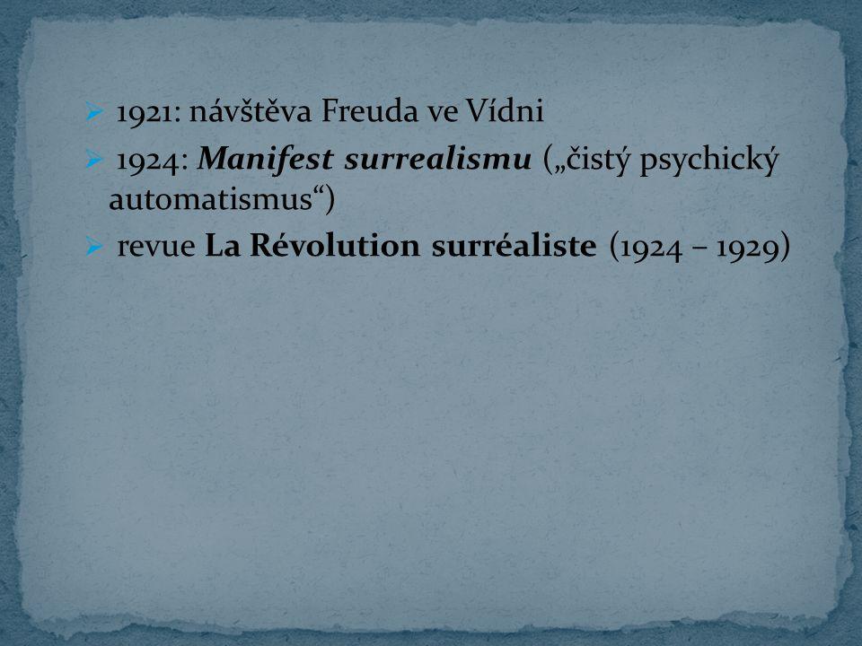1921: návštěva Freuda ve Vídni