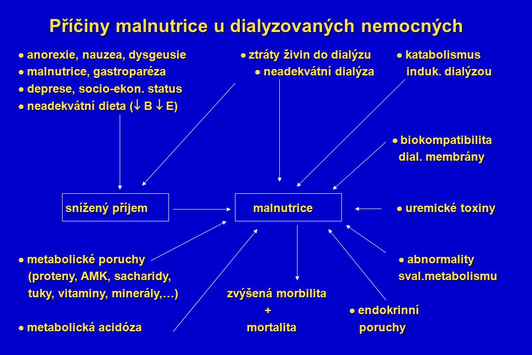 Příčiny malnutrice u dialyzovaných nemocných