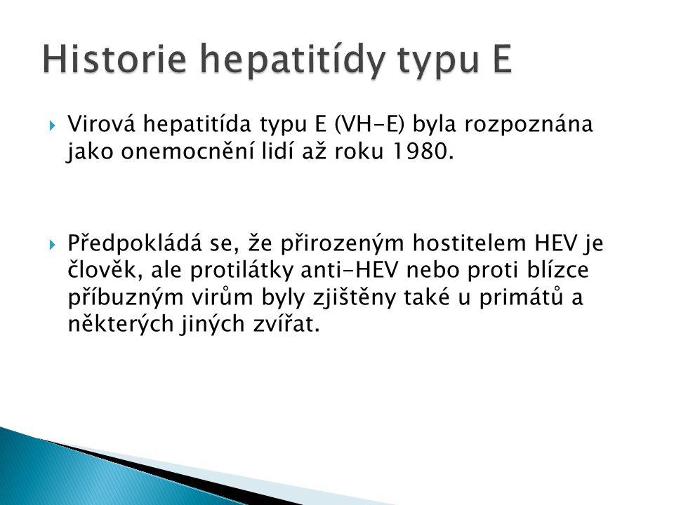 Historie hepatitídy typu E