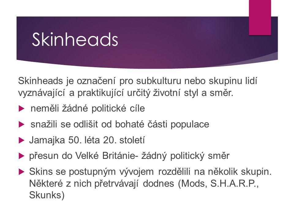Skinheads Skinheads je označení pro subkulturu nebo skupinu lidí vyznávající a praktikující určitý životní styl a směr.