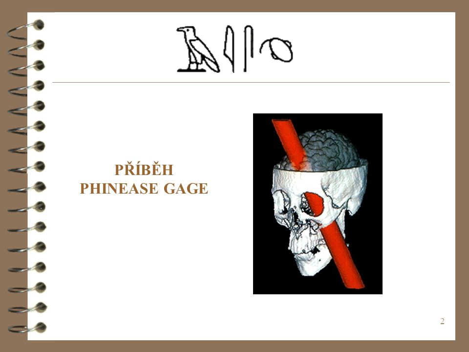 PŘÍBĚH PHINEASE GAGE (c) 1999. Tralvex Yeap. All Rights Reserved
