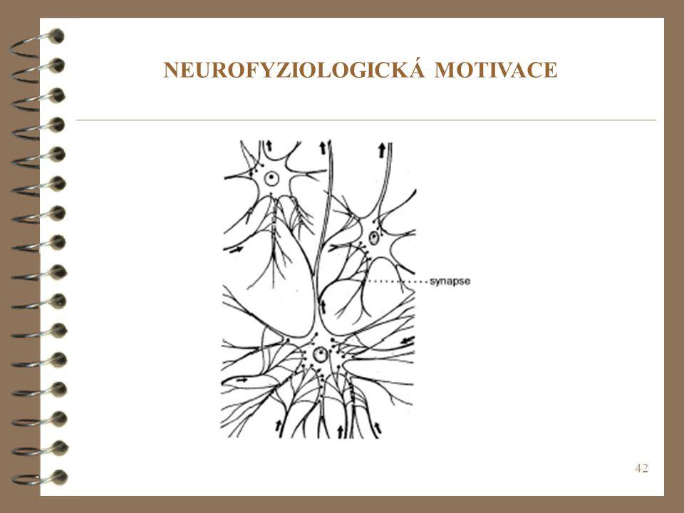 NEUROFYZIOLOGICKÁ MOTIVACE