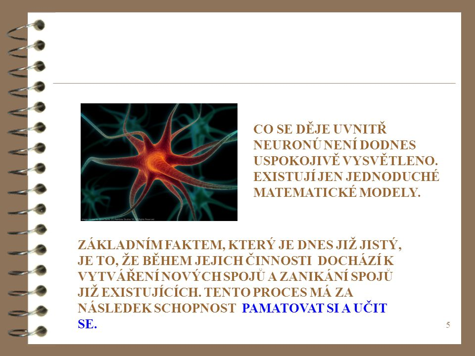 CO SE DĚJE UVNITŘ NEURONÚ NENÍ DODNES USPOKOJIVĚ VYSVĚTLENO