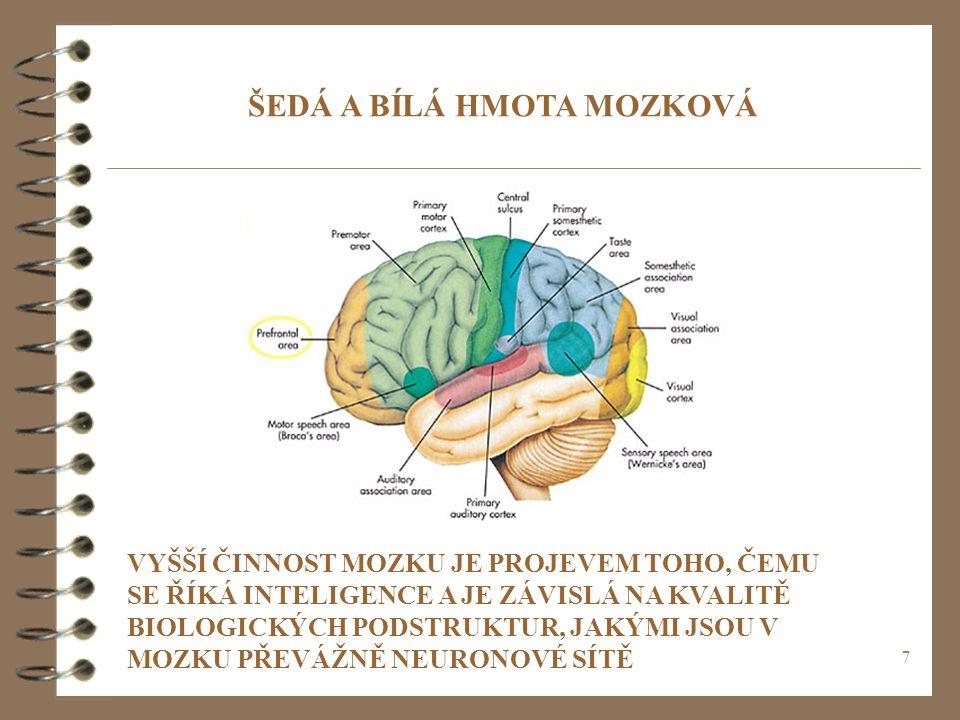 ŠEDÁ A BÍLÁ HMOTA MOZKOVÁ