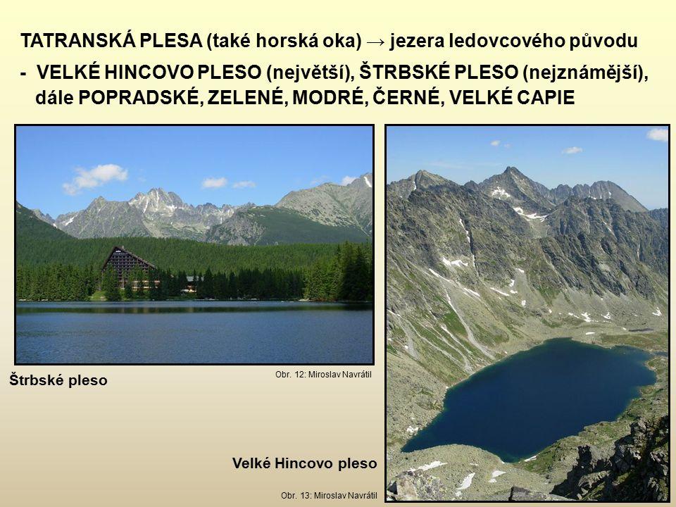 TATRANSKÁ PLESA (také horská oka) → jezera ledovcového původu