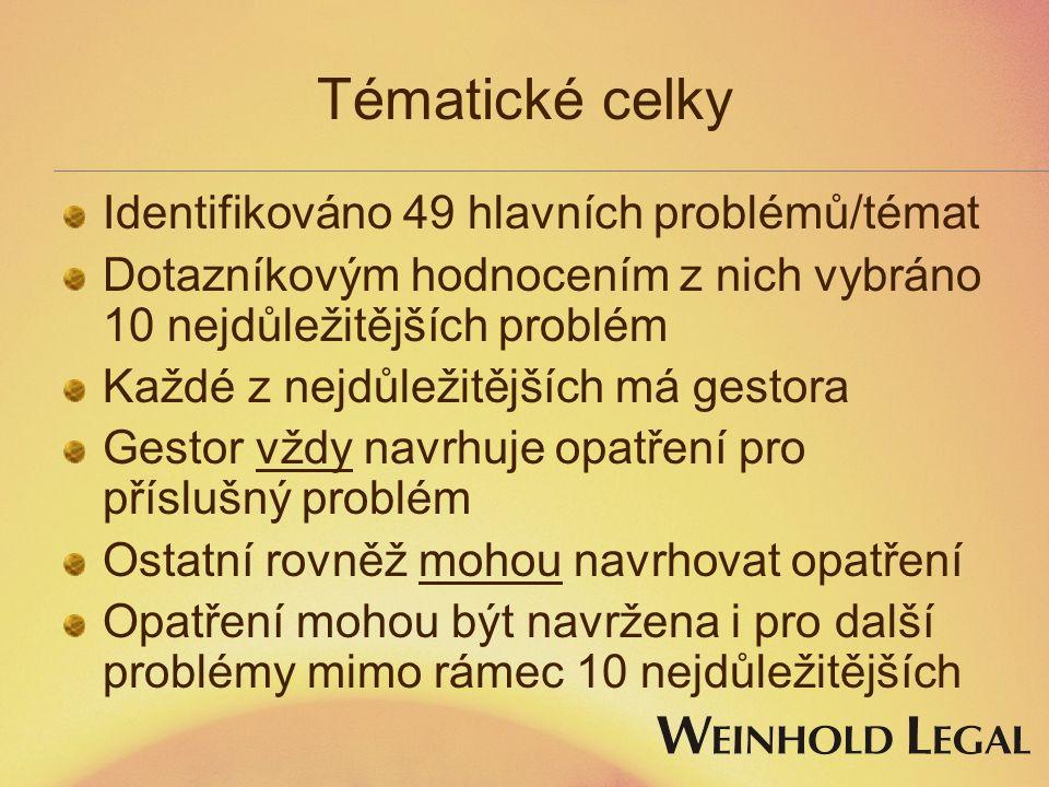 Tématické celky Identifikováno 49 hlavních problémů/témat