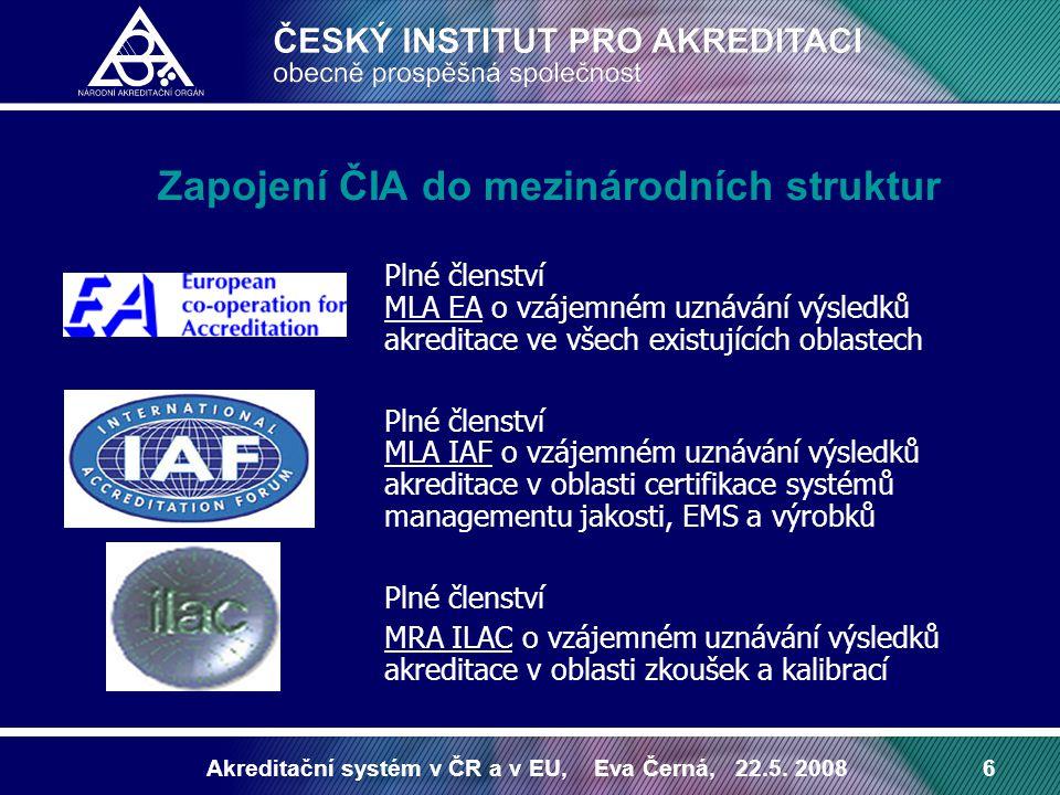 Zapojení ČIA do mezinárodních struktur