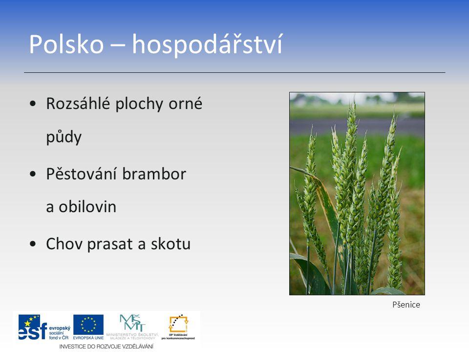 Polsko – hospodářství Rozsáhlé plochy orné půdy
