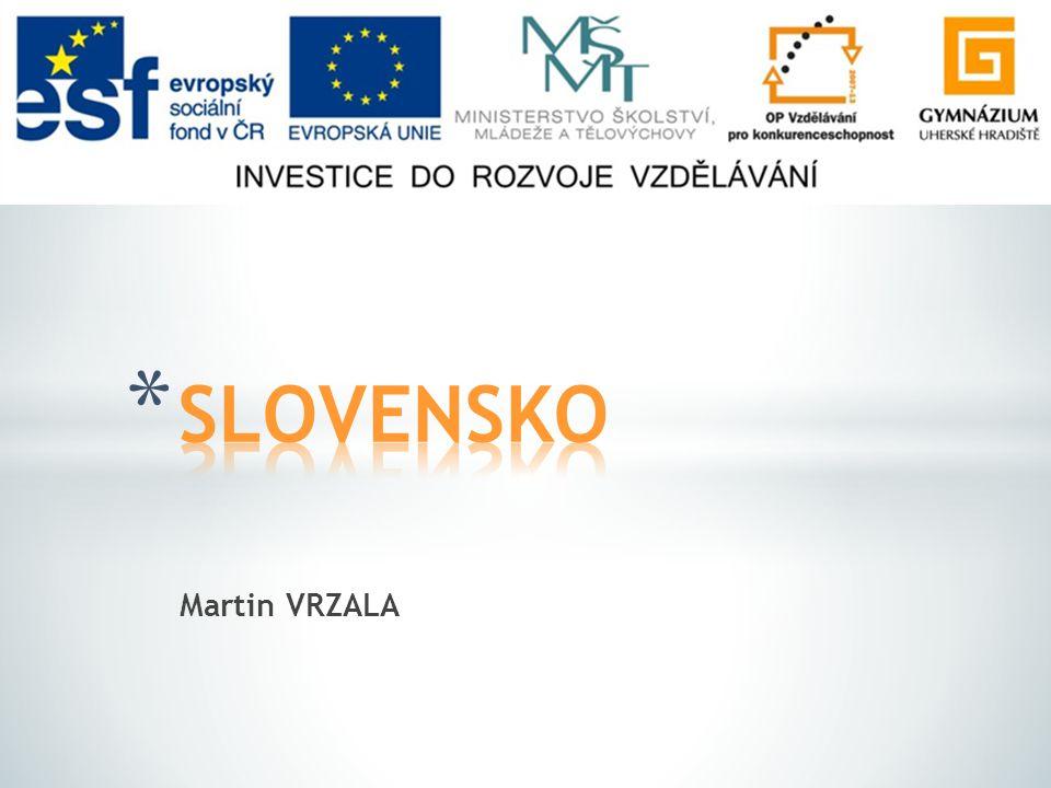 SLOVENSKO Martin VRZALA