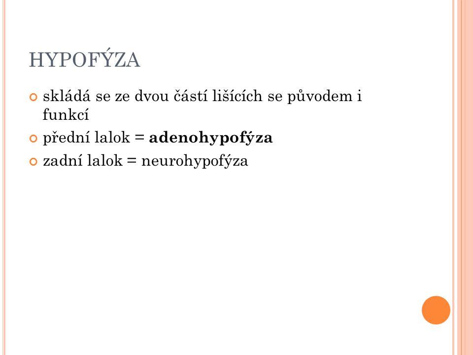 HYPOFÝZA skládá se ze dvou částí lišících se původem i funkcí