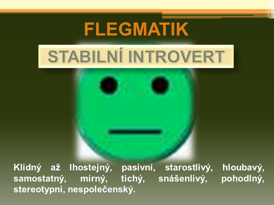 FLEGMATIK STABILNÍ INTROVERT