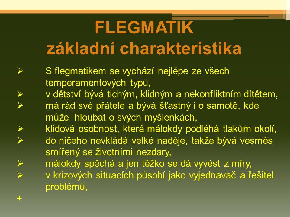 FLEGMATIK základní charakteristika