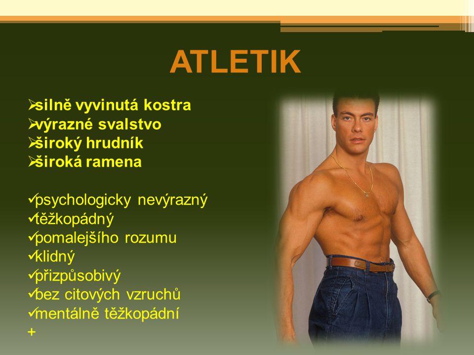 ATLETIK silně vyvinutá kostra výrazné svalstvo široký hrudník