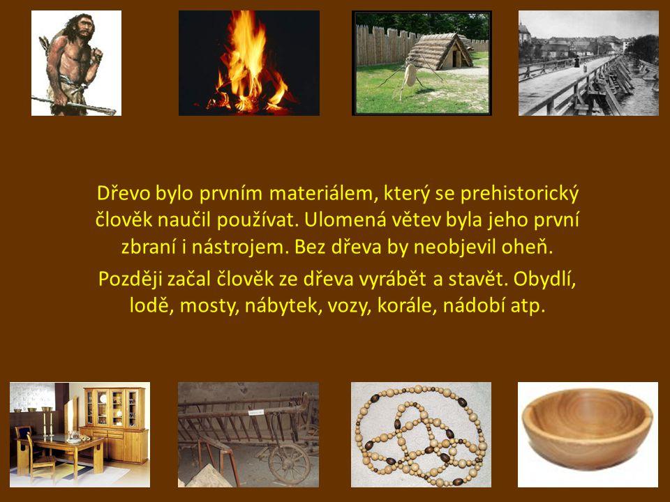 Dřevo bylo prvním materiálem, který se prehistorický člověk naučil používat. Ulomená větev byla jeho první zbraní i nástrojem. Bez dřeva by neobjevil oheň.