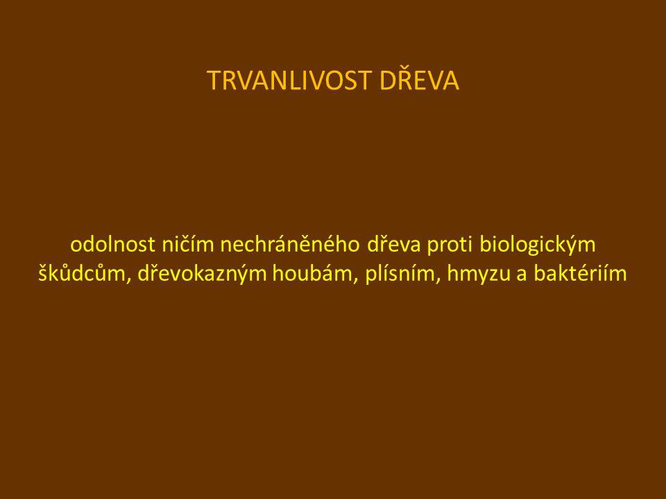 TRVANLIVOST DŘEVA odolnost ničím nechráněného dřeva proti biologickým škůdcům, dřevokazným houbám, plísním, hmyzu a baktériím.