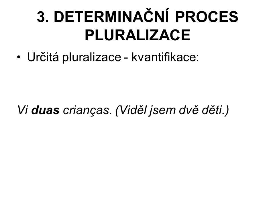 3. DETERMINAČNÍ PROCES PLURALIZACE