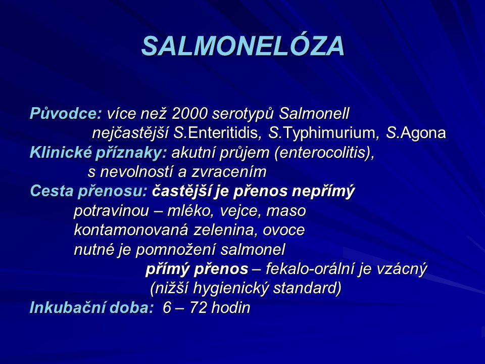 SALMONELÓZA Původce: více než 2000 serotypů Salmonell