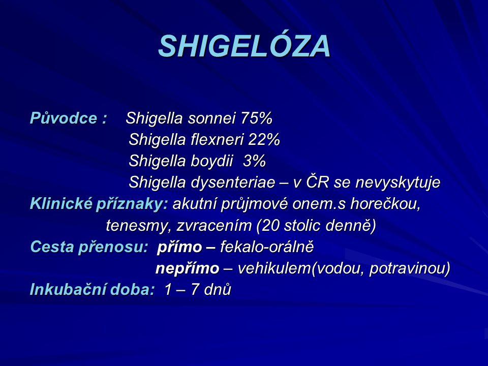 SHIGELÓZA Původce : Shigella sonnei 75% Shigella flexneri 22%