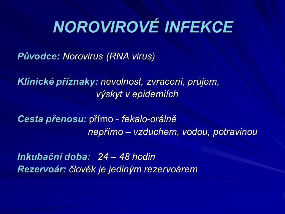 NOROVIROVÉ INFEKCE Původce: Norovirus (RNA virus)