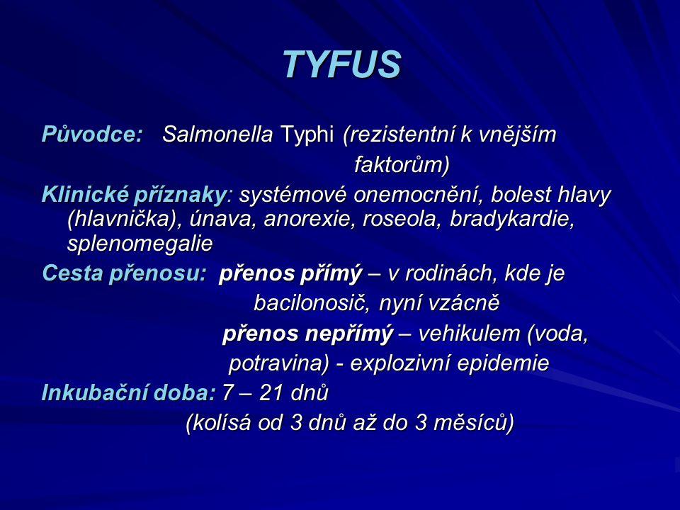 TYFUS Původce: Salmonella Typhi (rezistentní k vnějším faktorům)