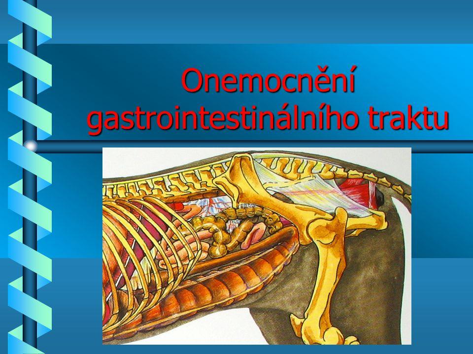 Onemocnění gastrointestinálního traktu