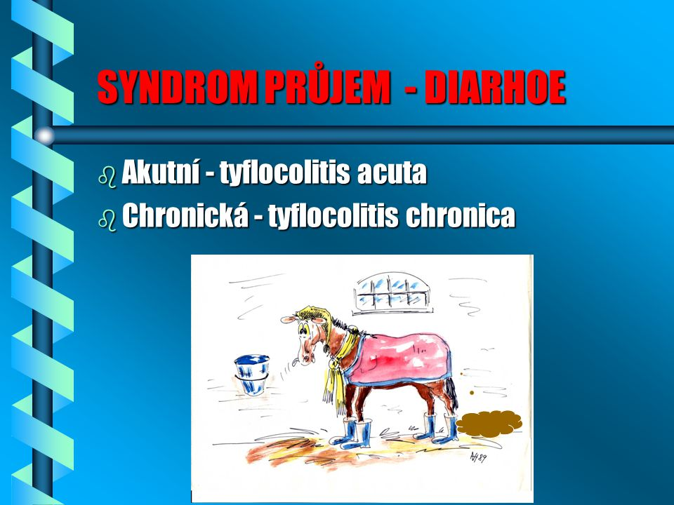 SYNDROM PRŮJEM - DIARHOE