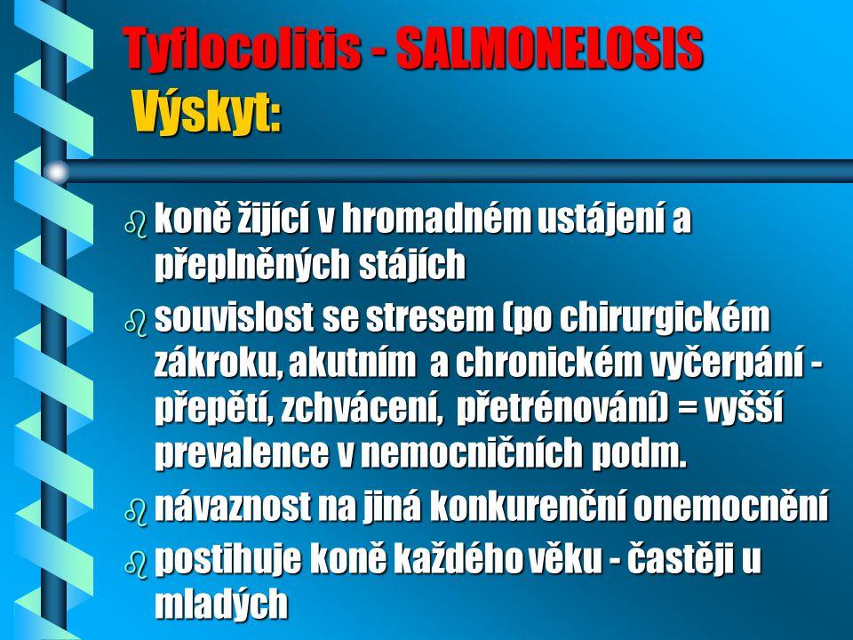 Tyflocolitis - SALMONELOSIS Výskyt:
