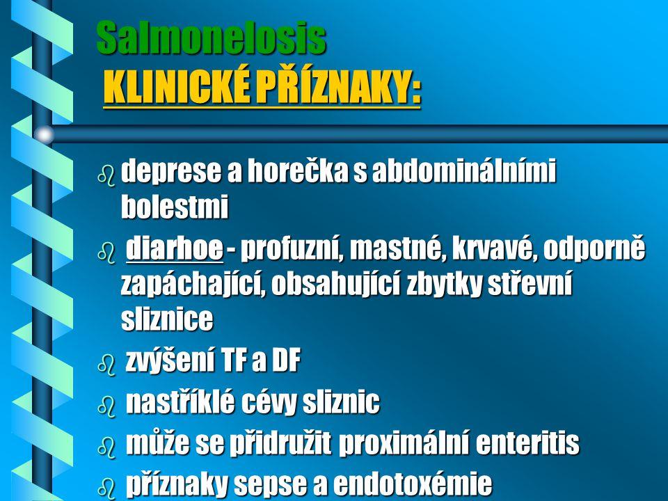 Salmonelosis KLINICKÉ PŘÍZNAKY: