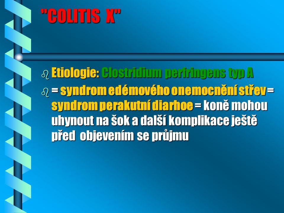 COLITIS X Etiologie: Clostridium perfringens typ A