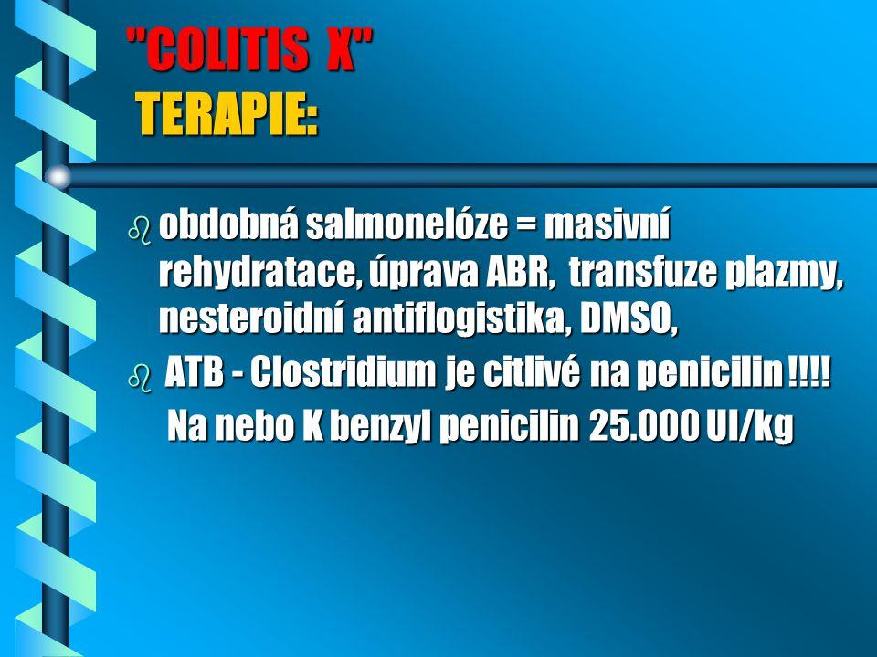 COLITIS X TERAPIE: obdobná salmonelóze = masivní rehydratace, úprava ABR, transfuze plazmy, nesteroidní antiflogistika, DMSO,