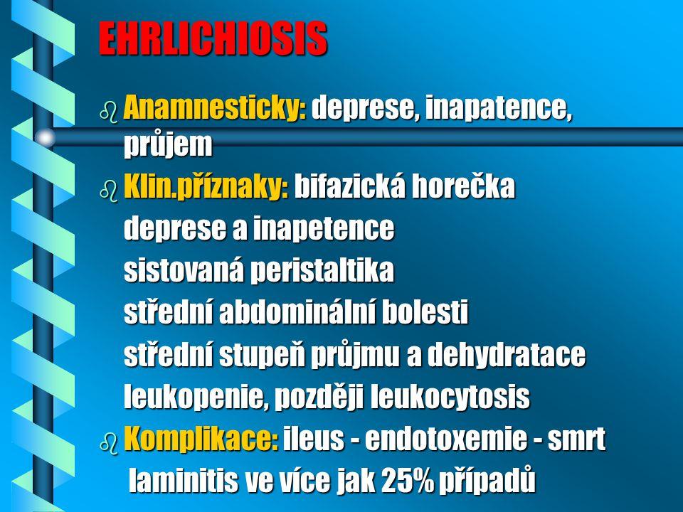 EHRLICHIOSIS Anamnesticky: deprese, inapatence, průjem