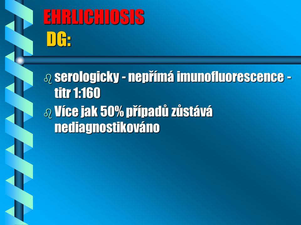 EHRLICHIOSIS DG: serologicky - nepřímá imunofluorescence - titr 1:160