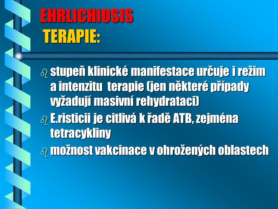 EHRLICHIOSIS TERAPIE: