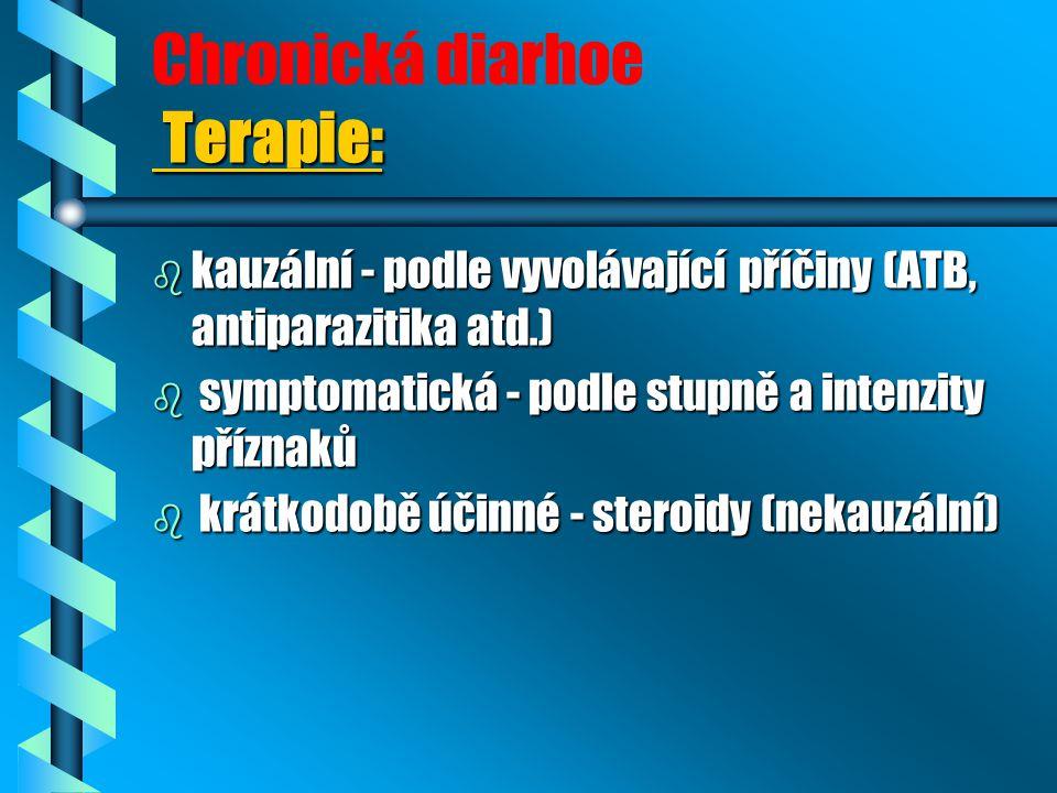 Chronická diarhoe Terapie:
