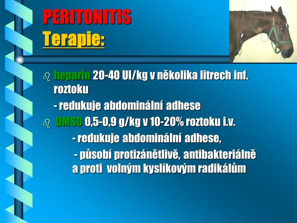 PERITONITIS Terapie: heparin 20-40 UI/kg v několika litrech inf. roztoku. - redukuje abdominální adhese.