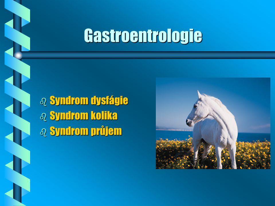 Gastroentrologie Syndrom dysfágie Syndrom kolika Syndrom průjem