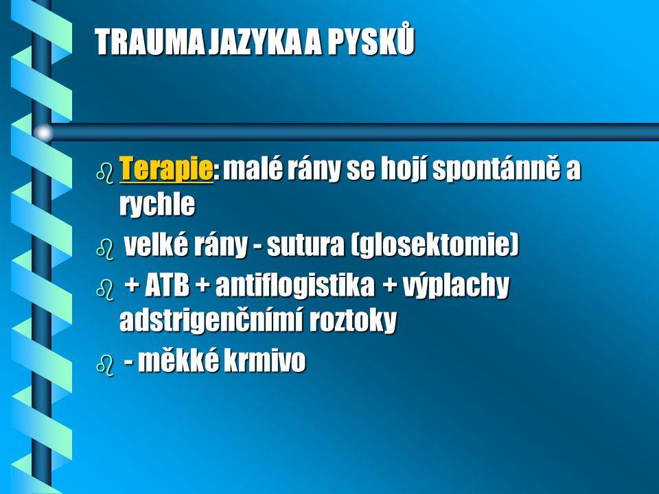TRAUMA JAZYKA A PYSKŮ Terapie: malé rány se hojí spontánně a rychle