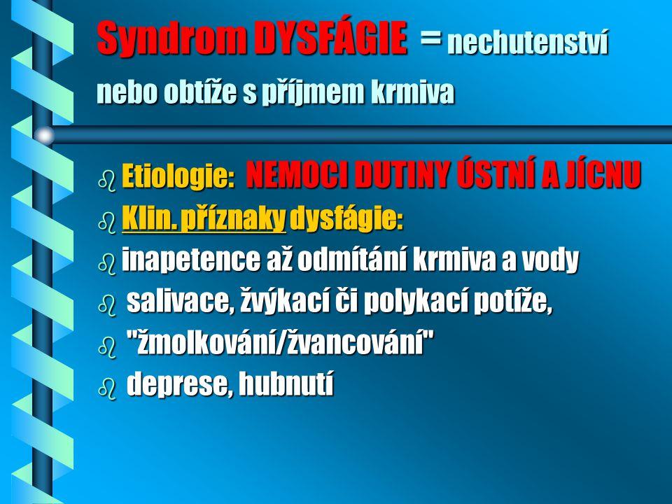 Syndrom DYSFÁGIE = nechutenství nebo obtíže s příjmem krmiva