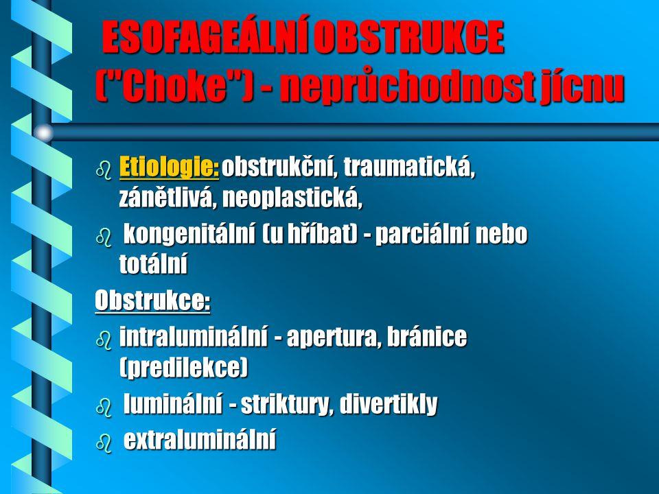 ESOFAGEÁLNÍ OBSTRUKCE ( Choke ) - neprůchodnost jícnu
