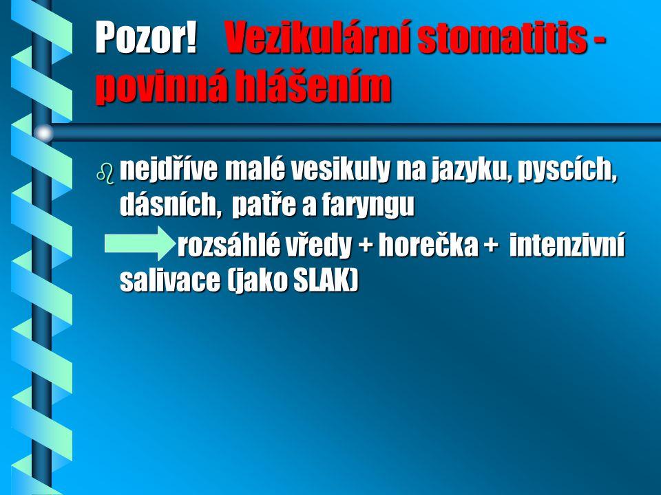 Pozor! Vezikulární stomatitis - povinná hlášením