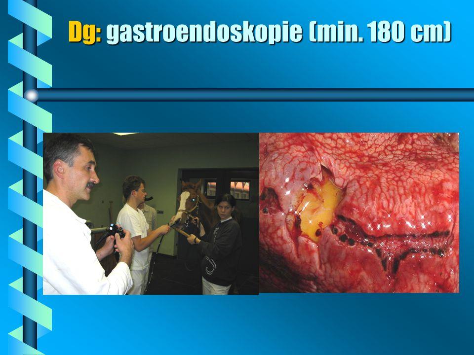 Dg: gastroendoskopie (min. 180 cm)