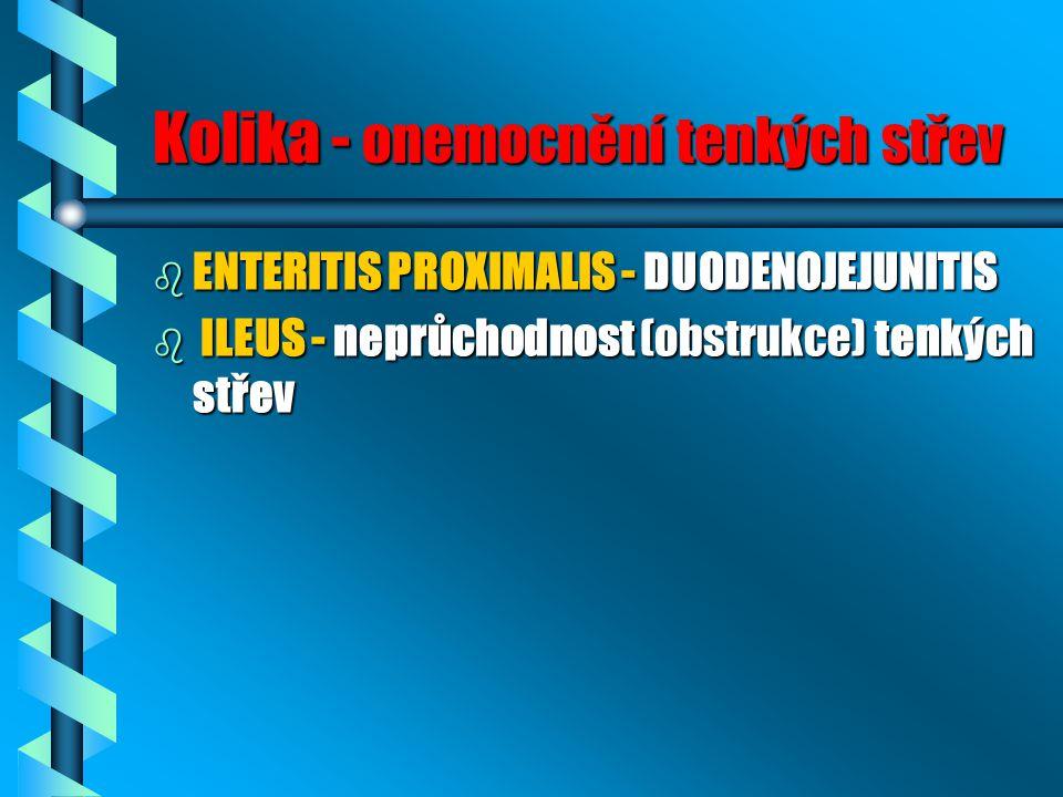 Kolika - onemocnění tenkých střev