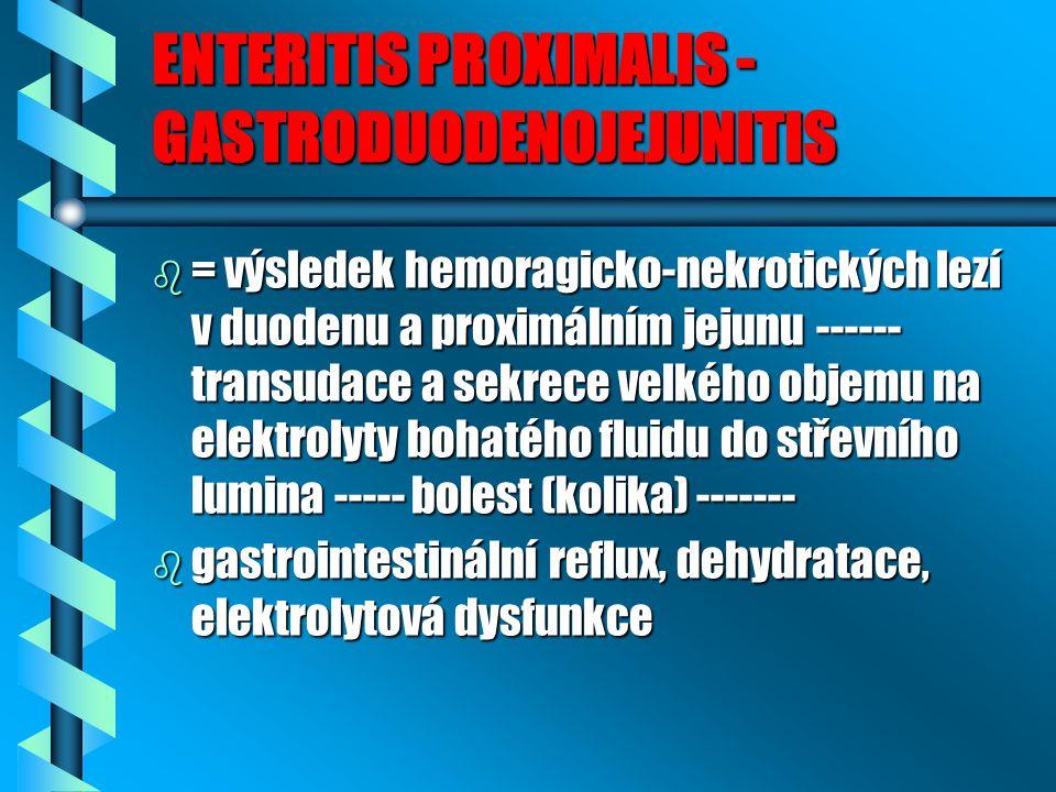 ENTERITIS PROXIMALIS - GASTRODUODENOJEJUNITIS