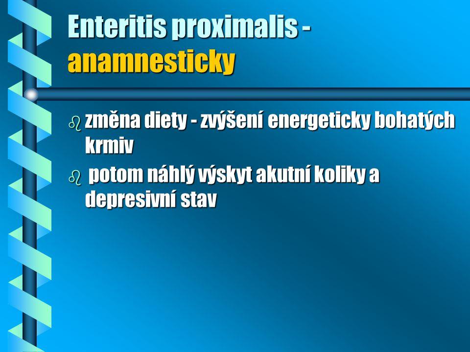 Enteritis proximalis - anamnesticky