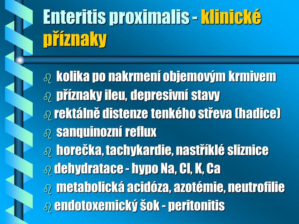 Enteritis proximalis - klinické příznaky