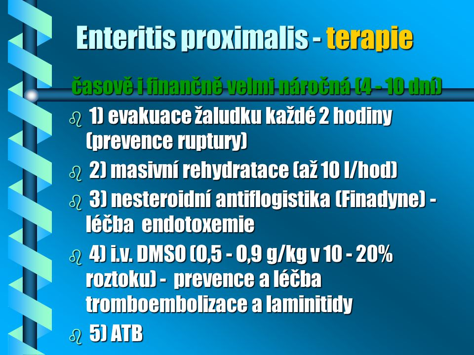 Enteritis proximalis - terapie