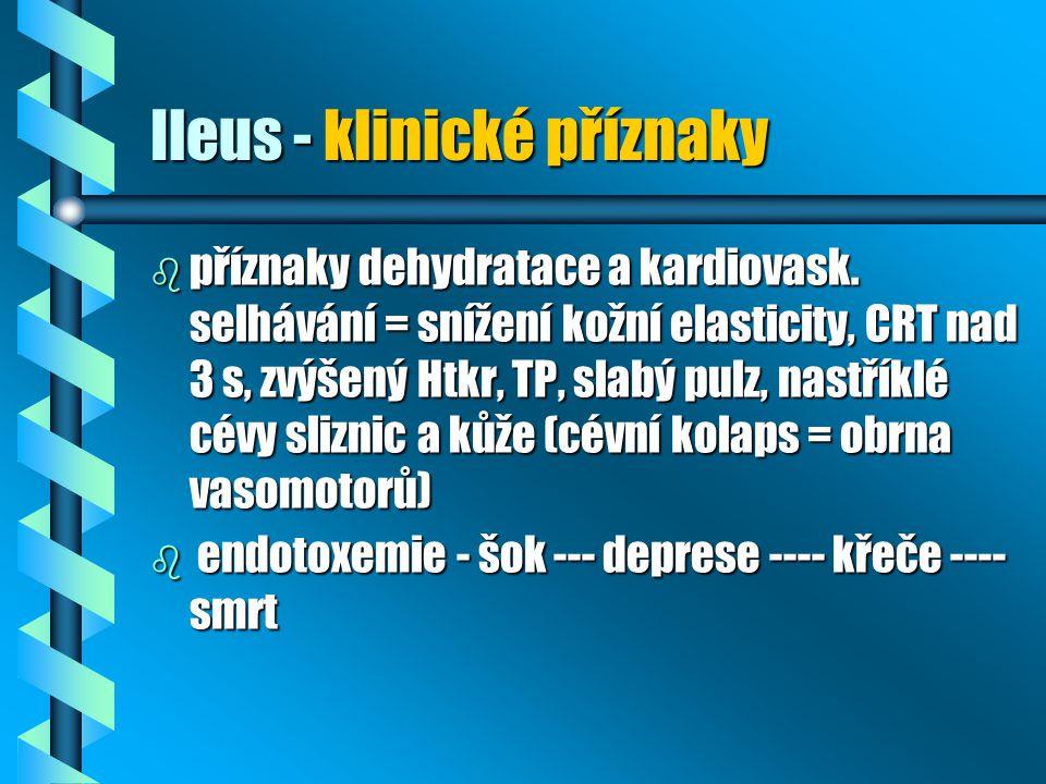 Ileus - klinické příznaky