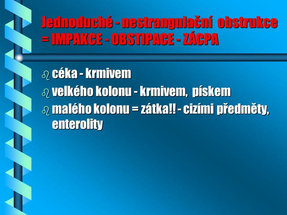Jednoduché - nestrangulační obstrukce = IMPAKCE - OBSTIPACE - ZÁCPA