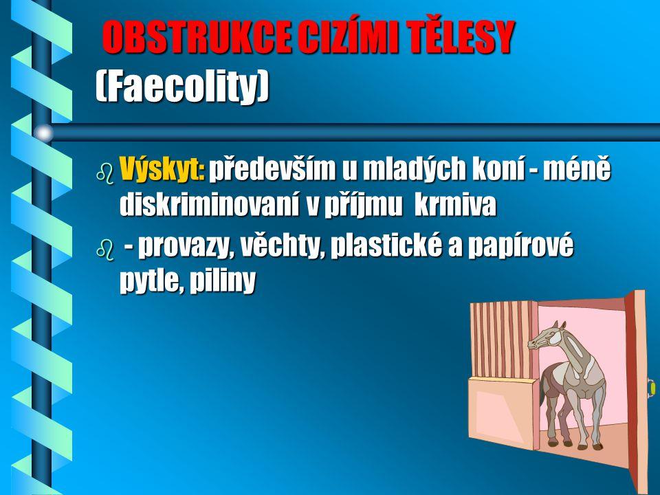 OBSTRUKCE CIZÍMI TĚLESY (Faecolity)
