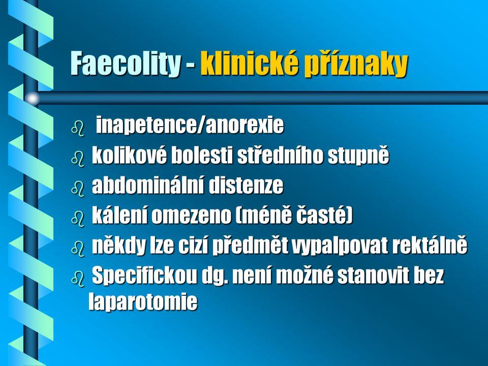 Faecolity - klinické příznaky